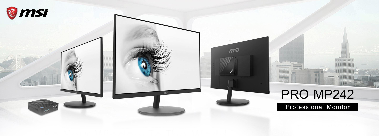 MSI LCD PRO MP242